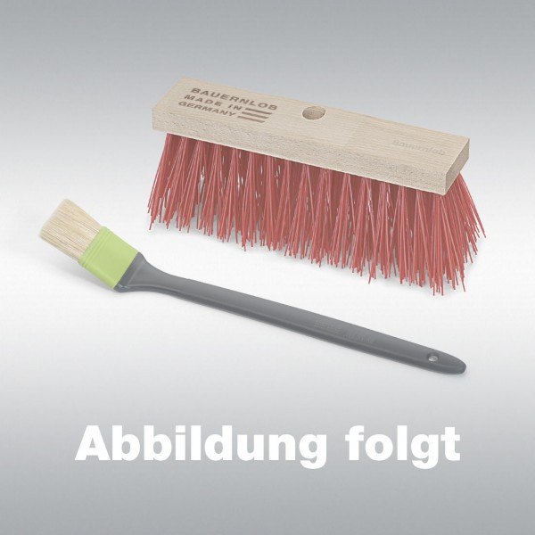 Saalbesen Arenga, 40 cm